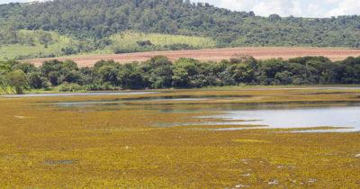 Nível da represa abaixa e prefeitura pede consumo consciente