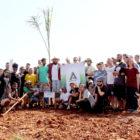 Plantio de Mudas mobiliza entidade e voluntários no Dia da Árvore